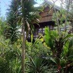 Suite Bungalow in the Garden