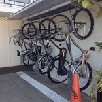 Electra bikes for rent!