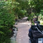 beautiful paths, very accessible