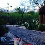 Lounging at dusk. My room is the red structure at right edge of photo
