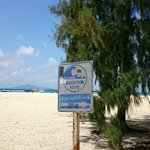 Tsunami evacuation sign at Bamboo island