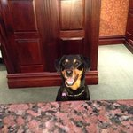 Tilly working reception
