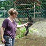 Patricia voert de spider monkeys