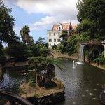 Beautiful gardens of Madeira