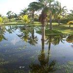 Laguna artificial de agua residual de la piscina.