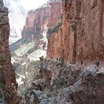 The Breathtaking North Rim Kaibab Trail