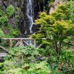 la cascata nei giardini