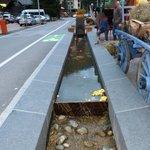 Bassins de la rue agrémentés devant restaurant