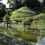 Dans le jardin japonais contemporain
