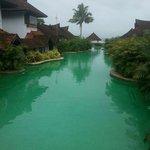 Meandering Pool