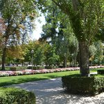 parterres de fleurs et jolis arbres