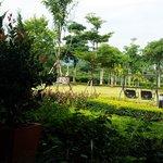 Nice garden with Khao Yai view