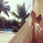 hamacas en la piscina del hotel