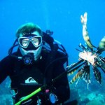 Lion Fish speared