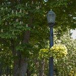 красивые кашпо с цветами на фонарных столбах