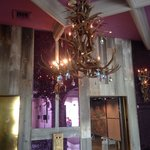 Antler chandelier, but definitely NOT a rustic lodge
