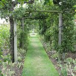 |Gunby Hall and Gardens