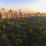 Central Park at sunrise