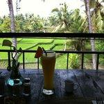 Balinese rice paddies, Ubud.