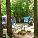Campground - Tent Site