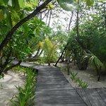 Walkways around the island.