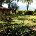 Garden with view of Sangre de Christo Mountains / Wheeler Peak
