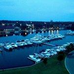 View of the marina at night