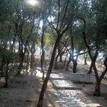 A path to Philopappou