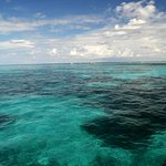 Third largest Coral Reef in the world below