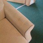 'gold' apartment foul smelling sofa.
