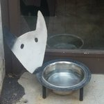 Awesome Pet Bowl at the front of the store!