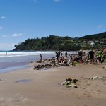 The busy section of Hot Water Beach