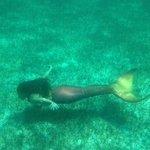 Bella the Mermaid