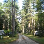 "One ""street"" of the campground"