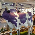Moooove it along in the cafe