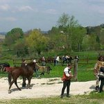 raduno cavalli e cavalieri con ricca mangiata