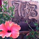 Las flores nunca son demasiadas en el Alfoz