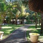 Parc de l'hôtel