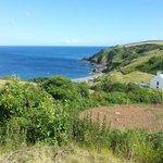 Overlooking Porthkerris