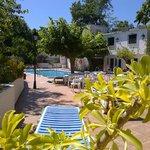 plenty of sunny space around the pool