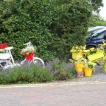 Perrywood Garden Centre's Le Tour cycle display