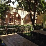 garden at Ryad