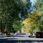 West Birch Street