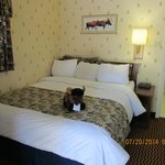 Cute Stuff Buffalo on bed...