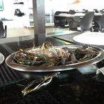 Camarão de água doce (Pitu) e área interna do restaurante
