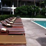 Poolside chairs.