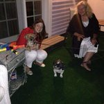 Sitting at the terrace with Jeanne and two dogs of other guests