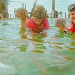 Found an urchin while swimming with the nurse sharks!