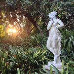 Ballerina at sunrise in Royal Botanic Gardens