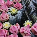 stunning fresh flowers